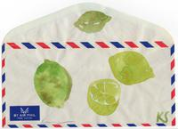 © Kate Schelter LLC 2020 | Limes air mail envelope by Kate Schelter