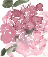 © Kate Schelter LLC 2020 | Pink peonies 5 by Kate Schelter